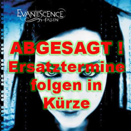 Evanescence: Tour 2003