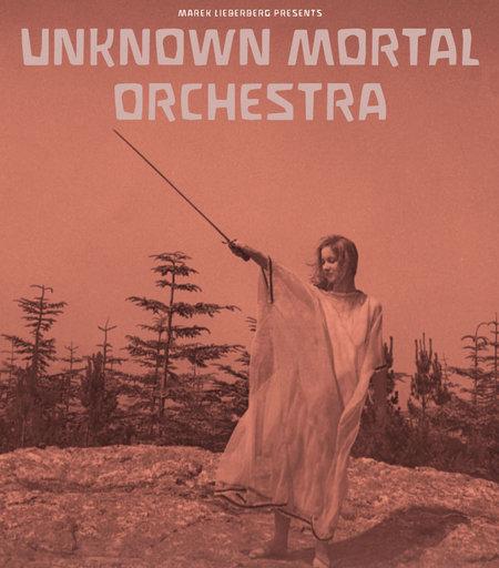 Unknown Mortal Orchestra: Live 2013