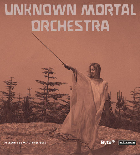 Unknown Mortal Orchestra: Tour 2013