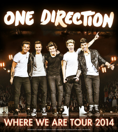 One Direction: Where We Are Tour 2014
