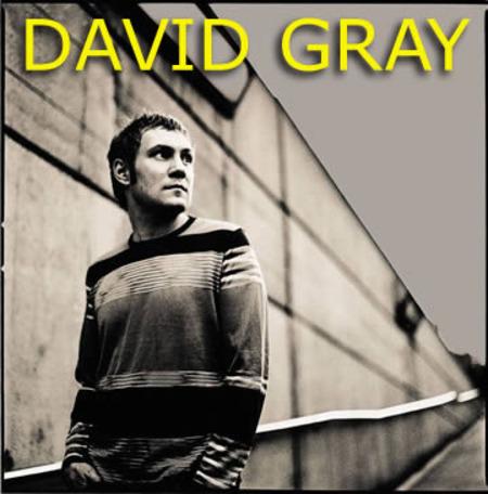 David Gray: Tour 2003