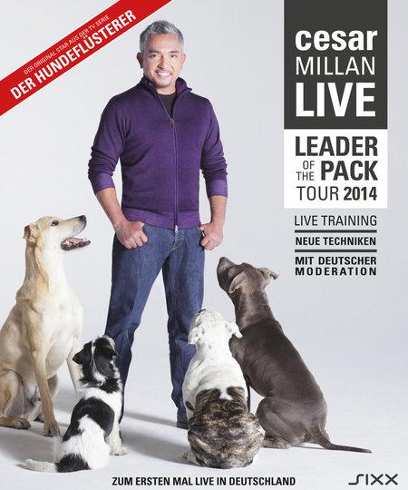 Cesar Millan: Leader of the Pack - Live 2014