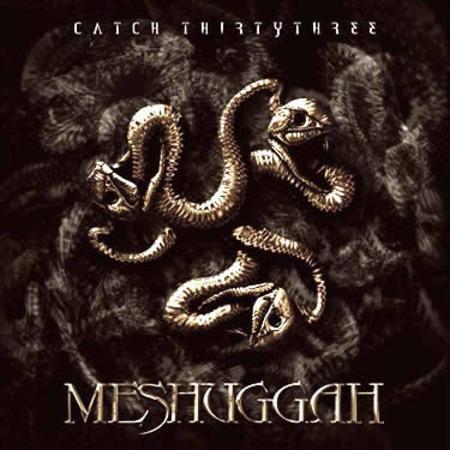 Meshuggah: Tour 2005