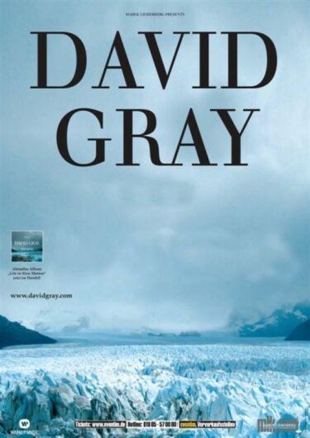 David Gray: Tour 2006