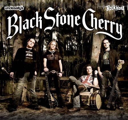 Black Stone Cherry: Tour 2008